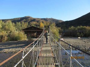 bridge denali lodge
